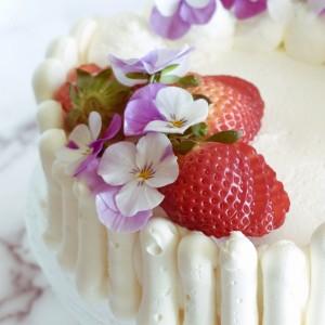 Torta gelato